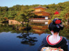 Princess Cruises Dramatically Expands Japan Cruise Program in 2014